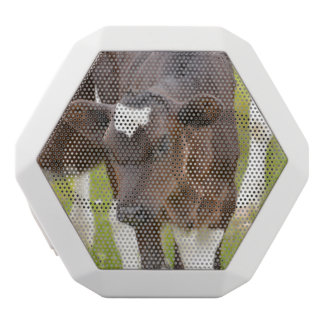 Brown and White Calf White Boombot Rex Bluetooth Speaker