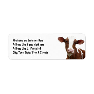 Brown and White Dairy Cow Return Address Label