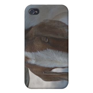 brown and white goat iPhone 4 case