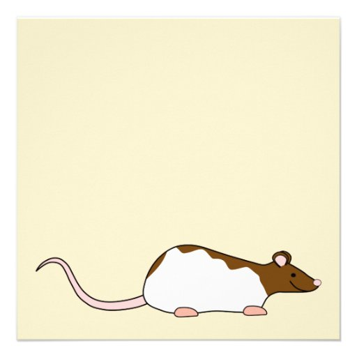 Brown and White Hooded Pet Rat. Custom Invite