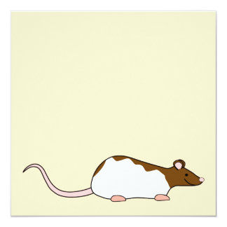 """Brown and White Hooded Pet Rat. 5.25"""" Square Invitation Card"""