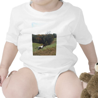 Brown and white horse at autumn pond tee shirts