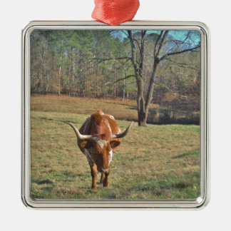 Brown and White Longhorn Bull Blue Sky Christmas Ornament