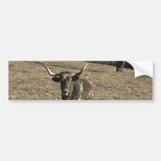 Brown and White Longhorn Bull Sepia Tone Bumper Sticker