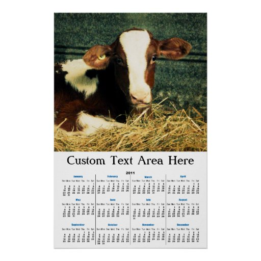 Brown and White Milk Cow Posters