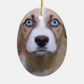 BROWN AND WHITE MIXED BREED DOG ORNAMENT
