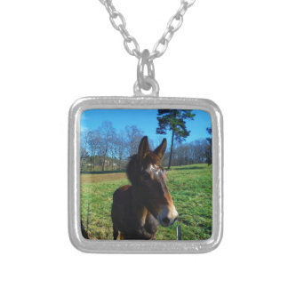 Brown and white mule silver plated necklace