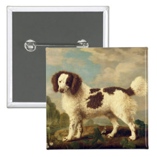 Brown and White Norfolk or Water Spaniel, 1778 (oi 15 Cm Square Badge