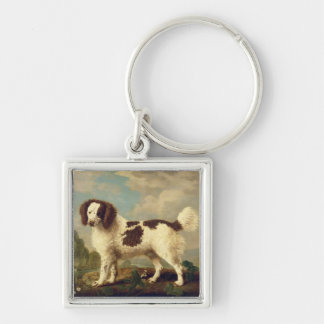 Brown and White Norfolk or Water Spaniel, 1778 (oi Keychains