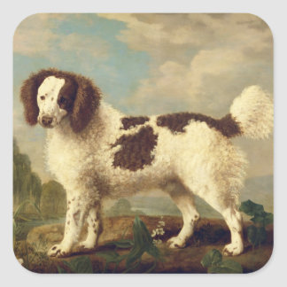 Brown and White Norfolk or Water Spaniel, 1778 (oi Square Sticker