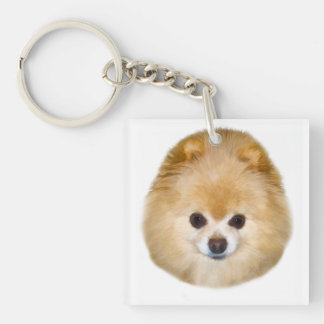 Brown and White Pomeranian Dog Single-Sided Square Acrylic Key Ring