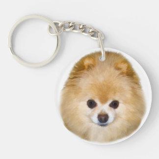 Brown and White Pomeranian Dog Single-Sided Round Acrylic Key Ring