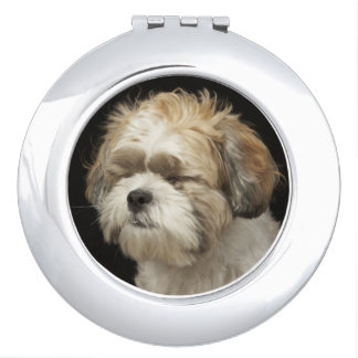 Brown and white Shih Tzu with eyes closed Compact Mirrors