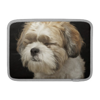 Brown and white Shih Tzu with eyes closed MacBook Sleeve