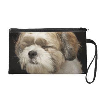 Brown and white Shih Tzu with eyes closed Wristlet Purses