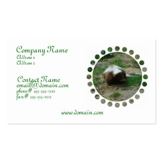 Brown and White Skunk Business Card