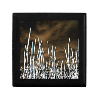 Brown and White Wild Weeds Nature Art Keepsake Boxes