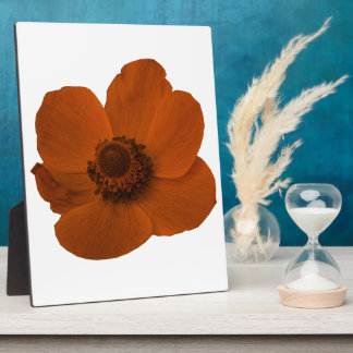 Brown Anemone Plaque