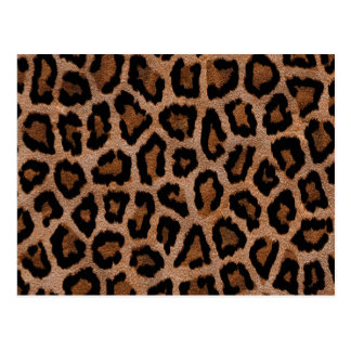 Brown animal print pattern postcard