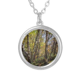 Brown Autumn Forest Landscape, Birch Trees Custom Jewelry