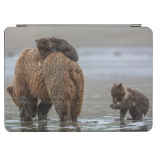 Brown bear and cubs iPad air cover