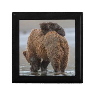 Brown bear and cubs small square gift box