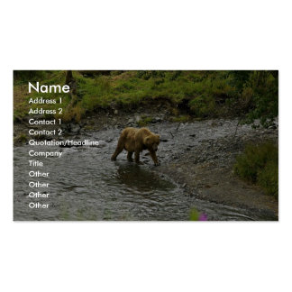 Brown bear at river's edge business card templates