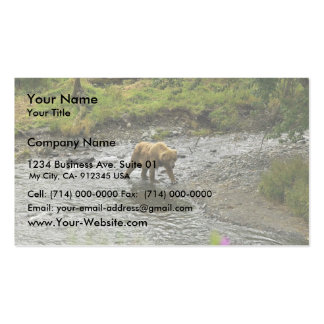 Brown bear at river's edge business cards
