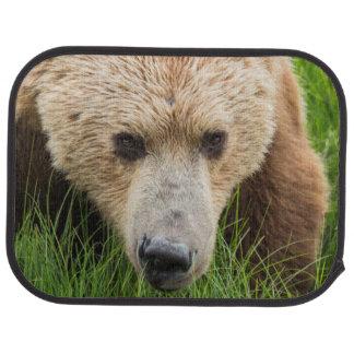 Brown Bear Car Mat