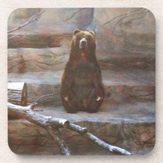 Brown Bear Drink Coaster