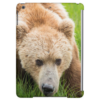 Brown Bear Cover For iPad Air