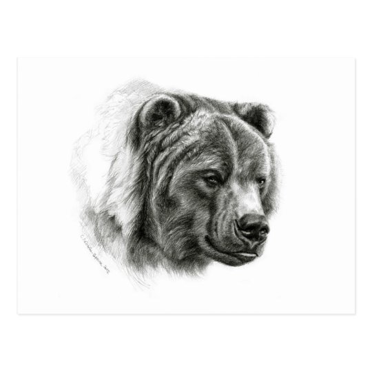 Brown Bear design by Schukina G054 Postcard