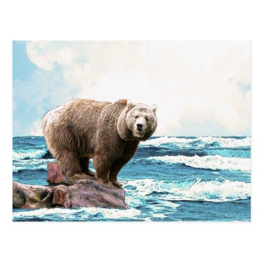 Brown Bear Exploring the Ocean! Postcard