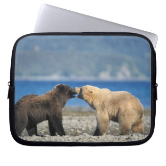 Brown bear, grizzly bear, play on the beach, laptop sleeve