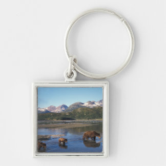 Brown bear, grizzly bear, sow and cubs in key ring