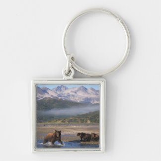 Brown bear, grizzly bear, sow fishing with cubs, key ring