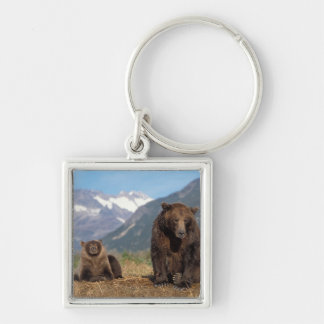 Brown bear, grizzly bear, sow with cub on Silver-Colored square key ring