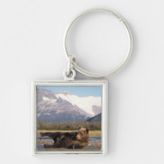 Brown bear, grizzly bear stretching on its back Silver-Colored square key ring