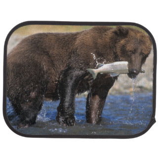 Brown bear, grizzly bear, with salmon catch, floor mat