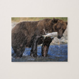 Brown bear, grizzly bear, with salmon catch, jigsaw puzzle