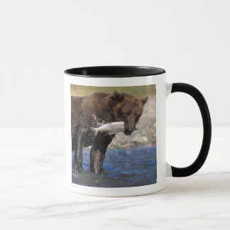 Brown bear, grizzly bear, with salmon catch, mug