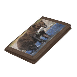Brown bear, grizzly bear, with salmon catch, tri-fold wallet