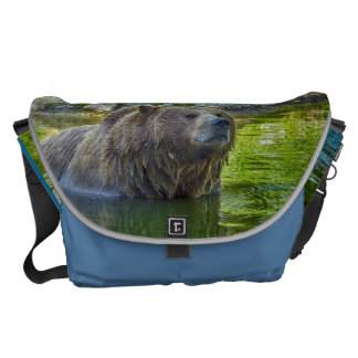 Brown bear in water commuter bags