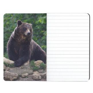 Brown bear journal