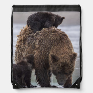 Brown Bear | Lake Clark National Park Drawstring Bag