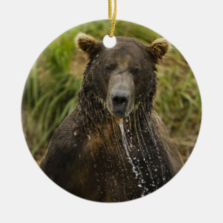Brown bear, male, fishing for salmon christmas ornament