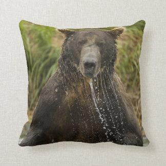 Brown bear, male, fishing for salmon cushion