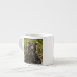 Brown bear, male, fishing for salmon espresso cup
