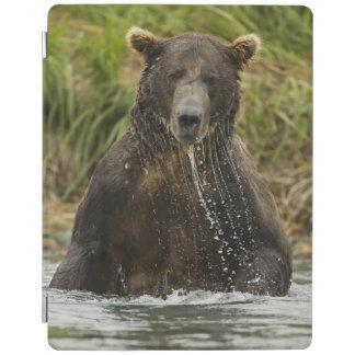 Brown bear, male, fishing for salmon iPad cover