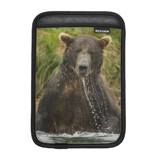 Brown bear, male, fishing for salmon iPad mini sleeve
